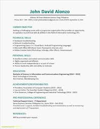 How To Make A Resume With No Job Experience Lovely Unique Resume No