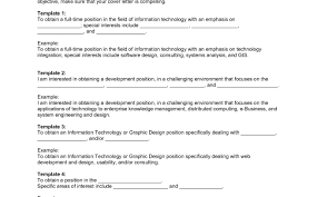 Resume Objective For Information Technology Example Resume