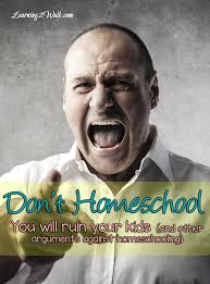 don t homeschool it will ruin your kids if you are facing opposition for homeschooling this series is for you it talks