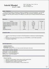 cv template word francais curriculum vitae en francais sample template example ofexcellent