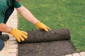 Laying sod is the quickest and most satisfying (and also the most  expensive) way to create an instant lawn.