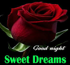 good night sweet dreams love flower