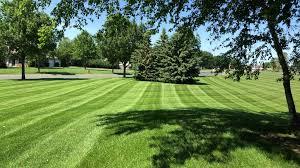 Lawn Care Services Precision Landscaping Construction Inc