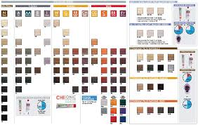 Chi Tone And Shine Color Chart Chi Ionic Permanent Shine Hair Color Chi Haircare Pro