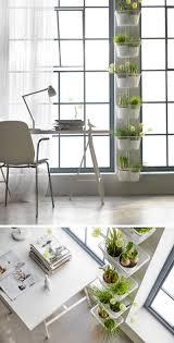 Hanging Kitchen Herb Garden Indoor Garden Idea Hang Your Plants From The Ceiling Walls