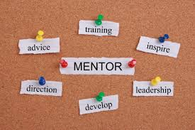 should you choose a voluntary or paid mentor essay