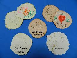 Biodegradable Paper With Flower Seeds Make Seed Paper Nasa Climate Kids
