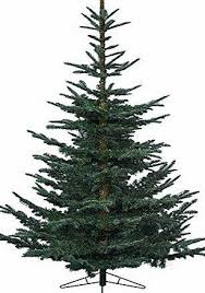 UK Christmas World 1.8m Everlands Nobilis Fir Artificial Luxury Realistic  Christmas Tree Height: 180cm