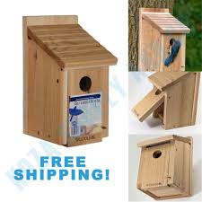 bird house feeder bluebird nesting box wood cedar cage tree nest nature woodlink