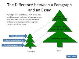 easy essay topics for middle school students premier unique 5 paragraph essay for middle school students
