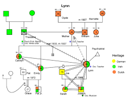 Genogram Used To Map A Family And Family Dynamics Issues Over