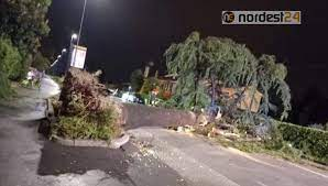 Maltempo nel Veneto orientale: alberi a terra e viabilità interrotta –  Nordest24