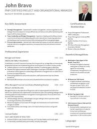 Professional Resume Templates 2013 A Professional Cv Template Cv Resume Template Cv Template