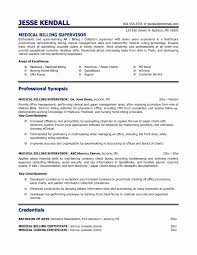 chef resume samples new attorney cover letter no experience write  chef resume samples new attorney cover letter no experience write me top persuasive essay