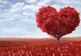 Bilderesultat for kjærlighet