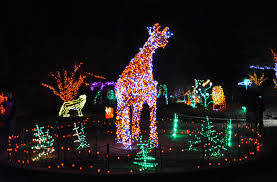 Garden Of Lights January 1 Midatlantic Daytrips Where To See Holiday Lights In And