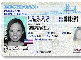 Driver's License Underwriters Bay Enhanced Saginaw Need Ever An Now Than More Why You