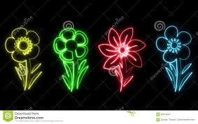 Colorful Neon Flowers Animation Graphic Element Type 2 Stock Video - Video:  93516541