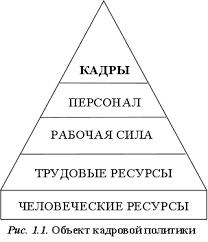Понятие функции и структура кадровой политики Рефераты ru Схематически дифференциация понятий определяющих объект кадровой политики показана на рис 1 1 16