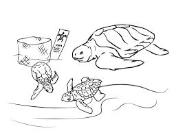 Innovative Sea Turtle Coloring Page Coloring D #8635 - Unknown ...