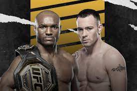 UFC Division Champions & Featured Fighters