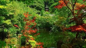 Landscape Kyoto Garden Beautiful Japan Landscape
