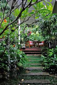Small Picture 406 best Tropical gardening images on Pinterest Gardening