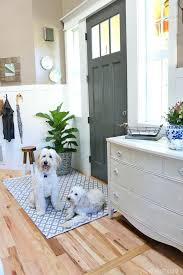 luxury best rugs for dogs and new indoor outdoor rug in the entry 15 sisal rug