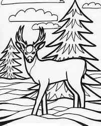 Small Picture wildlife coloring pages printable wwwmindsandvinescom