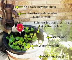 container water garden for your patio