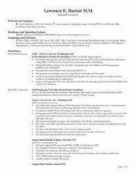 Etl Developer Resume Lovely 9 Give E An Idea Informatica Etl
