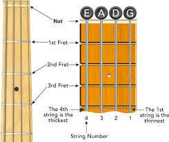 4 String Bass Guitar Fretboard Chart Bass Guitar Fretboard Diagram Learn To Play Music Blog