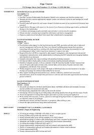 Domestic Engineer Resume Sample Sales Engineer Senior Resume Samples Velvet Jobs 24