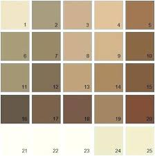 Shades Of Brown Paint Vinni Info