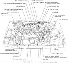 1999 nissan sentra engine schematics nissan datsun sentra gxe i have a 1999 nissan sentra gxe 1 6 graphic 1999 ford f250 engine diagram