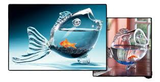 Betta Art Decorative Fish Bowl Decorative Glass Fish Bowl Betta Bowls 47