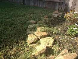 fresh lawn mowing service. Fine Mowing Fresh Lawn Mowing Service  Houston TX Not Even Close To Being Trimmed On R