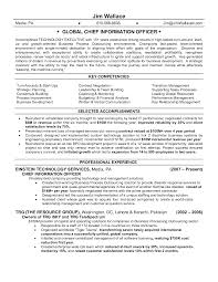 Bunch Ideas Of Awesome To Do Cio Resume 11 Chief Information