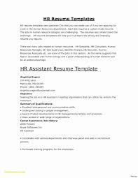 Professional Cv Format For Teachers Elegant Educational Resume