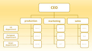20 Scientific Starbucks Organizational Structure Chart