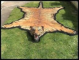 antique taxidermy rug rare giant tiger skin lion cat leopard scar