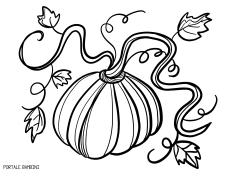 Disegni Di Zucche Di Halloween E Non Solo Da Colorare Portale
