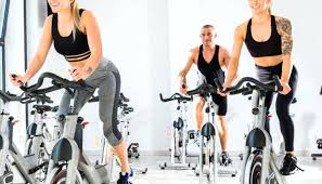 sunny health fitness and exercise bike review sf b1110s sunny health fitness and pro indoor cycling