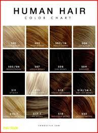 28 Albums Of Wella Dark Brown Hair Color Explore