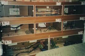 image taken in 1994 of part of my set up in england using melamine and sliding glass door terrariums