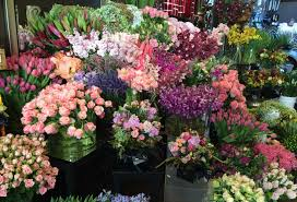 Flowers with Love - Avery, Stephens & Whitelaw Lady Florists   The Culture  Concept Circle