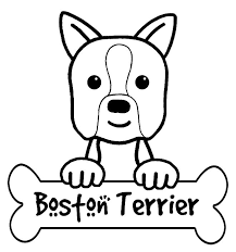 Small Picture terrier coloring page
