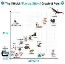 Chart Dog Graph