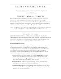 Professional Business Resume Business Analyst Resume Examples ...