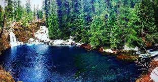 Tamolitch blue pool Temperature Blue Pool Oregon That Oregon Life The Breathtaking Tamolitch Falls Is Now Visible At Blue Pool That